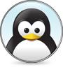 icn-linux.jpg